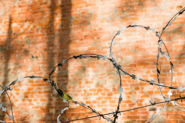 Arame farpado no fundo dos tijolos vermelhos. parede, de, vermelho, tijolos, com, metal, arame farpado