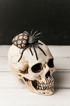 Aranha de brinquedo assustador no crânio humano