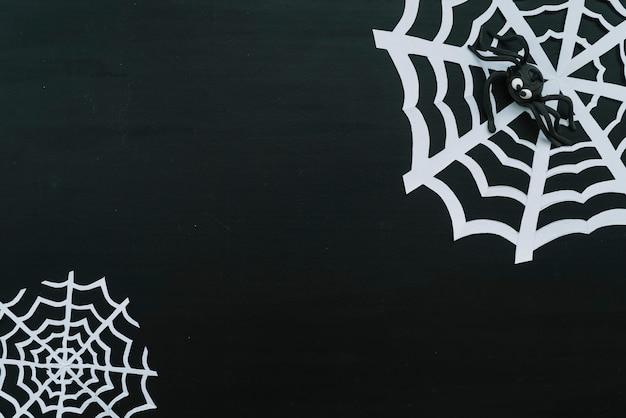 Aranha de brinquedo engraçado na web de papel
