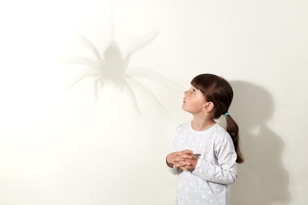 Aranha projeta grande sombra na parede, criança do sexo feminino com medo de insetos, olha o inseto com olhar assustado, mantém as mãos no peito, veste camisa branca e tem cabelos escuros.