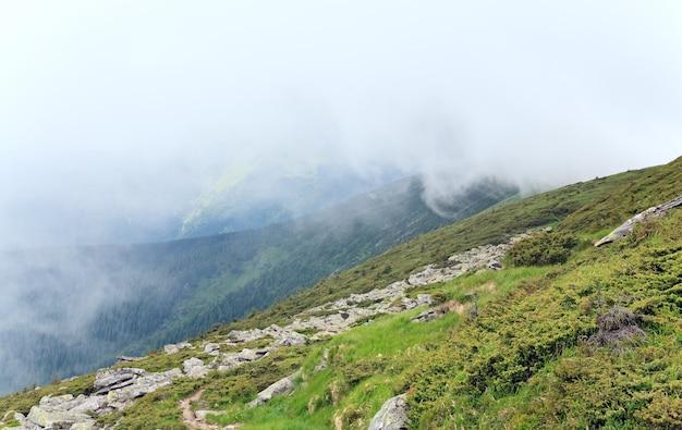 Arbusto de zimbro e grandes pedras na encosta da montanha no verão (ucrânia, montanhas dos cárpatos)