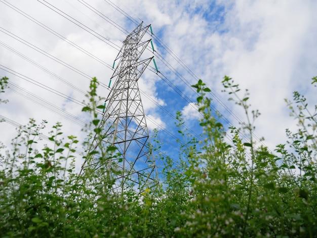 Arbustos verdes da torre de alta tensão e linhas de energia contra o céu azul nublado
