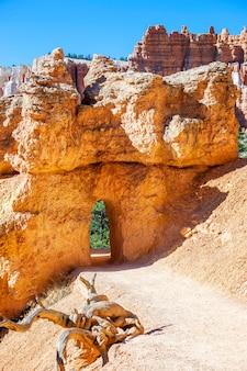 Arco de caminhada no parque nacional de bryce canyon, ut