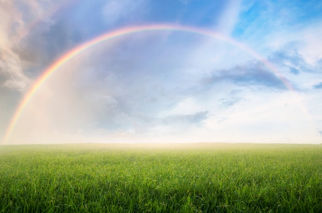 Arco-íris com prado.