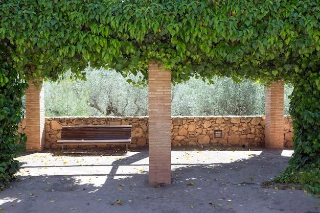 Arco realizado por ivy hedera helix magnoliophyta magnoliopsida atrás do qual está um banco de madeira vazio que lhe confere um ambiente romântico e tranquilo