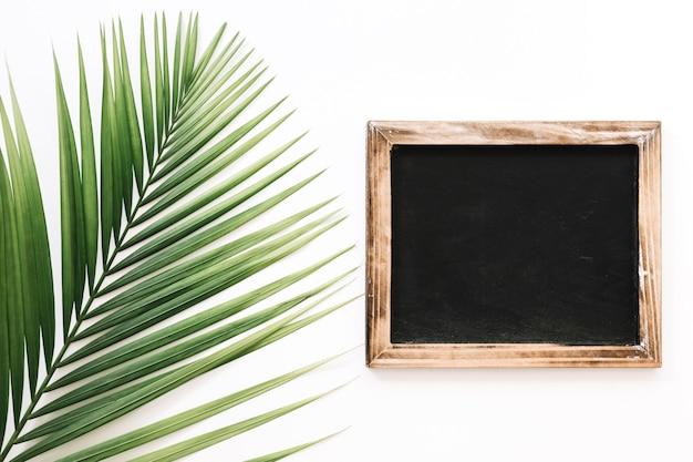 Ardósia preta além de folha de palmeira contra fundo branco