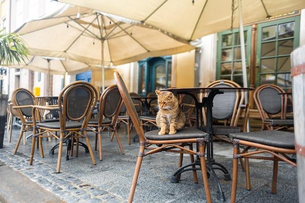 Área aconchegante de restaurantes ao ar livre no centro histórico
