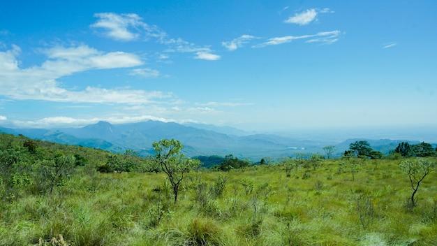 Área de floresta em western ghats mountains