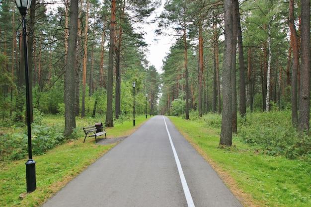 Área do parque com boa estrada e bancos