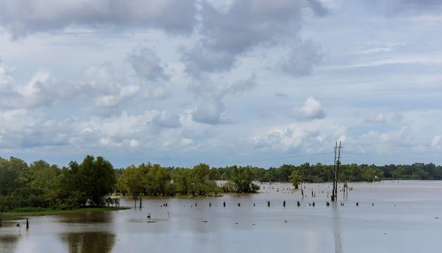 Área inundada de campo e floresta devido à paisagem de campo inundada
