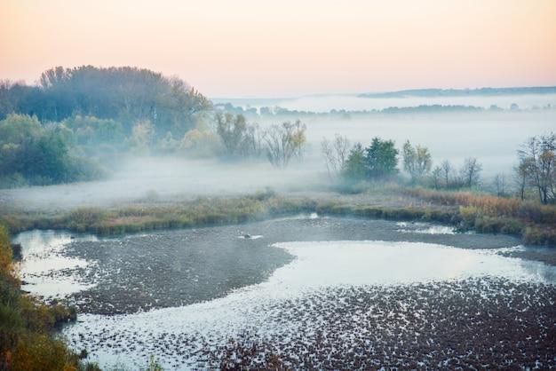 Área misteriosa do pântano