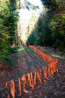 Área restrita em uma floresta