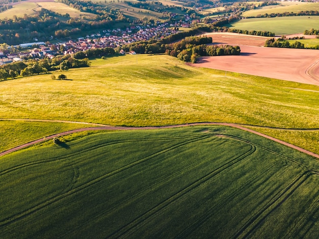 Áreas de terreno cobertas por grama verde durante o dia