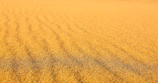 Areia amarela ondulada texturizada em todo o quadro
