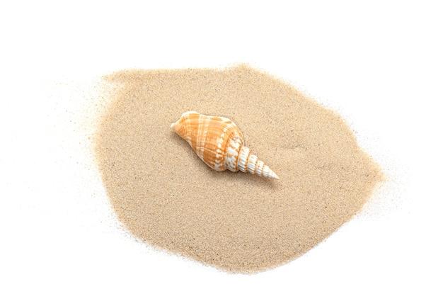 Areia branca e concha, pilha de areia com concha isolada no branco