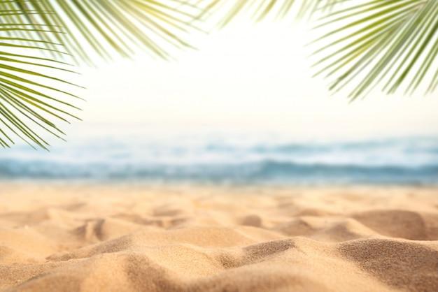Areia com palm turva e fundo de bokeh de praia tropical