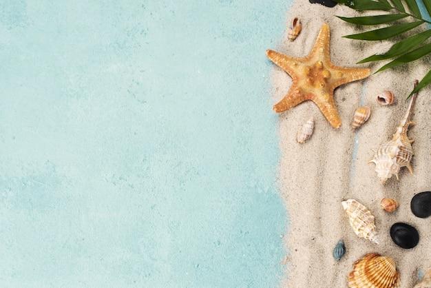 Areia de cópia-espaço com conchas e estrelas do mar