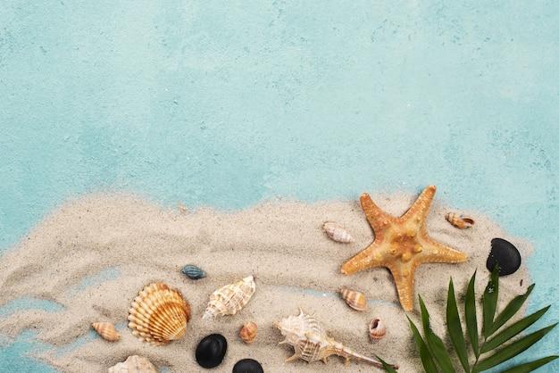 Areia de cópia-espaço com conchas