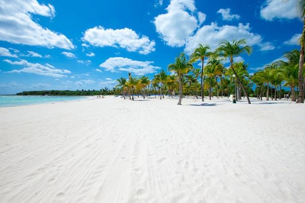 Areia e mar e céu