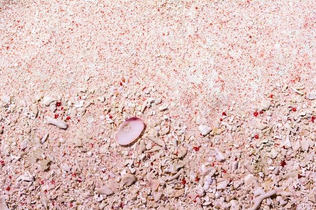 Areia rosa e corais mortos na praia rosa no parque nacional de komodo