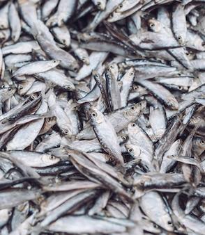 Arenques pequenos de peixe no mercado de peixe. peixe orgânico fresco.