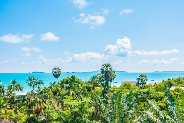 Arial vista de mar e praia