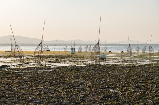Armadilhas de bambu tradicionais no lago lam takong de nakhon ratchasima