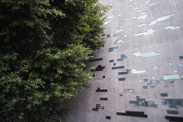 Arquitetura urbana com árvores