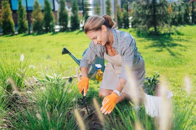 Arrancando ervas daninhas. mulher de família atraente usando camisa quadrada e luvas laranja, sentada de joelhos enquanto arranca ervas daninhas
