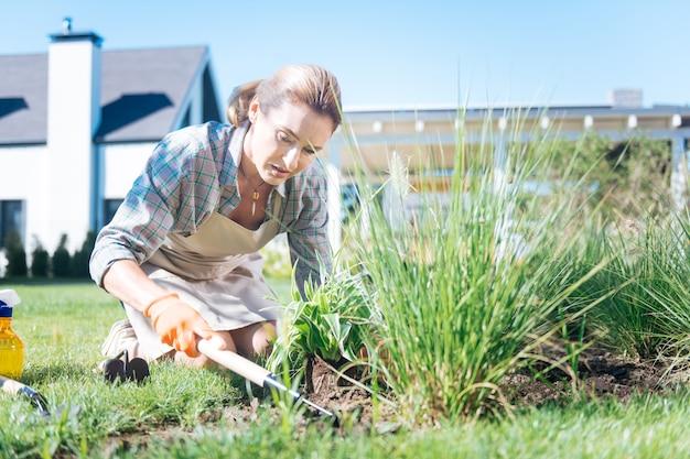 Arrancar ervas-daninhas. dona de casa bonita usando luvas laranja puxando ervas daninhas enquanto passa a manhã no quintal