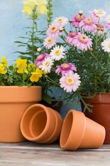 Arranjo com flores em vasos