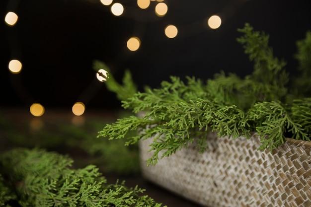 Arranjo com galhos de árvore de natal em uma caixa