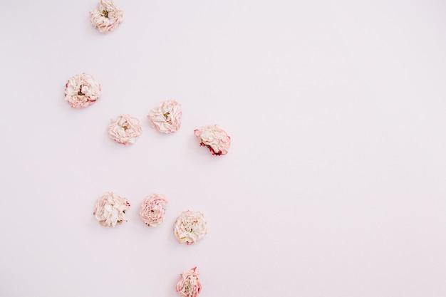 Arranjo de botões de rosas secas em rosa