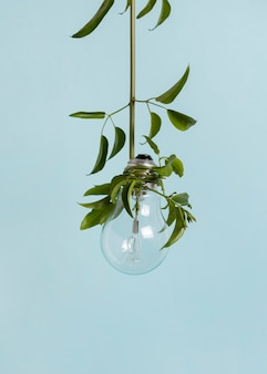 Arranjo de conceito de sustentabilidade de natureza morta
