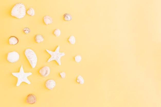 Arranjo de conchas e estrelas do mar sobre fundo amarelo