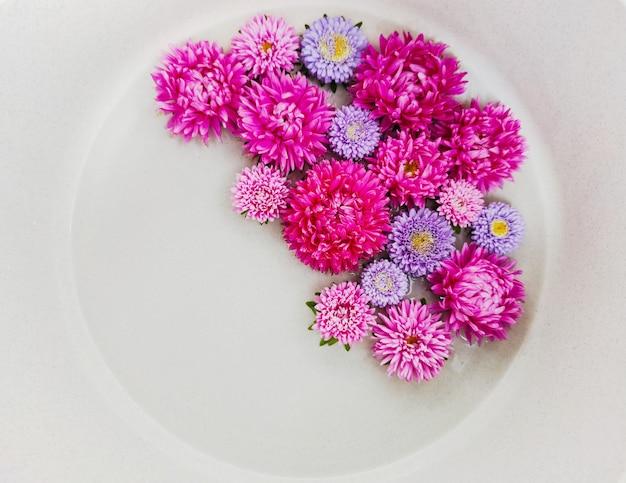 Arranjo de flores de ásteres