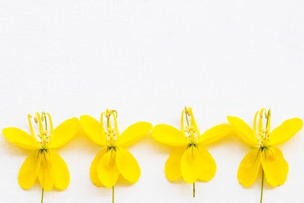 Arranjo de flores de borboleta amarela em estilo de cartão postal