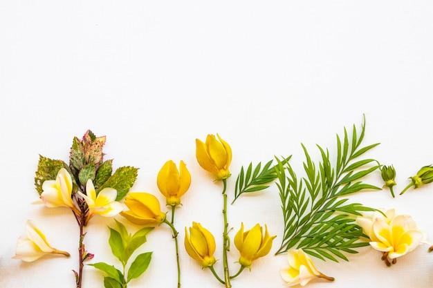 Arranjo de flores de folha, ylang e frangipani estilo de cartão postal plano leigo