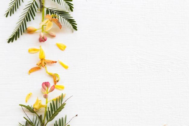 Arranjo de flores de tamarindo plano plano estilo cartão-postal