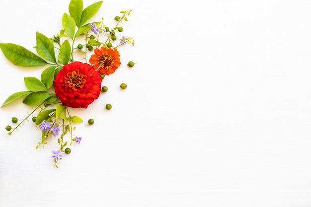 Arranjo de flores de zinnia elegans em estilo de cartão postal