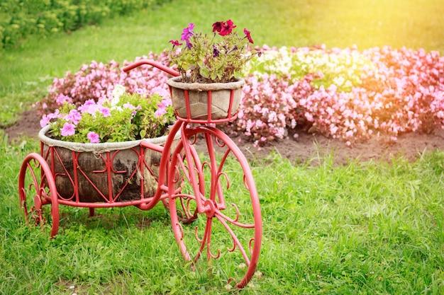 Arranjo de flores em forma de bicicleta