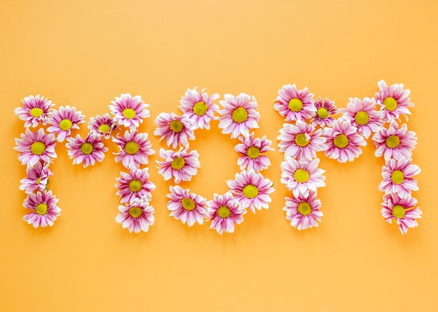Arranjo de flores rosa plano