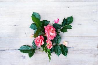 Arranjo de flores rosa rosa isolado no fundo cinza de madeira