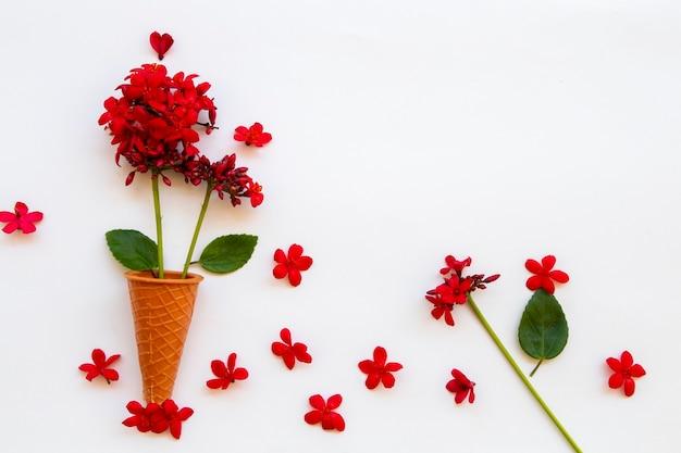 Arranjo de flores vermelhas rubiaceae plano plano estilo cartão postal