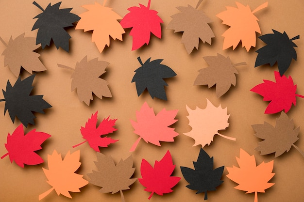 Arranjo de folhas de outono de vista superior
