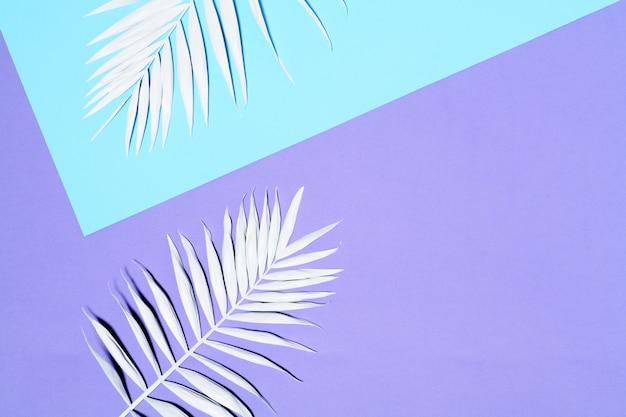 Arranjo de folhas de palmeira branca
