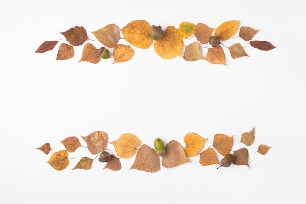 Arranjo de folhas secas e bolotas formando listras
