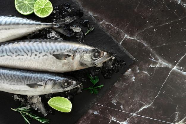 Arranjo de frutos do mar saudáveis