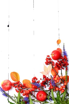 Arranjo de livreto de outono de frutas e flores em uma vista de cima de fundo de madeira branco
