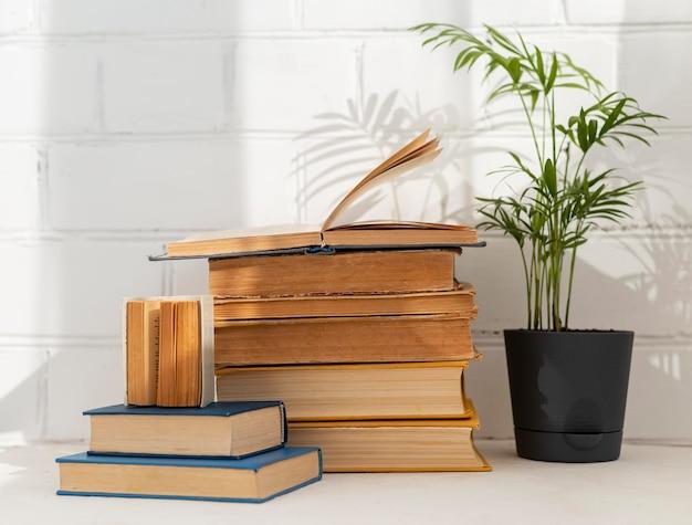 Arranjo de livros com planta em vaso